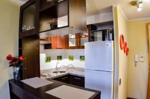 Una cocina o zona de cocina en Boulevard Bellas Artes Suites