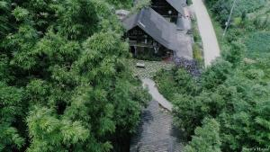Phori's House - Bamboo Forest