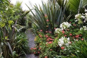 A garden outside Lingalonga