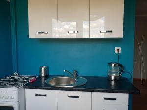 A kitchen or kitchenette at Trio kawalerka w centrum