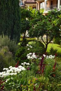 Градина пред Аркадия Апарткомплекс