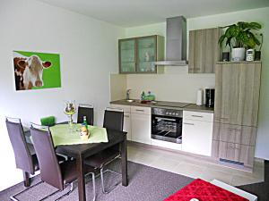 A kitchen or kitchenette at Harztour Fewo Apartments Wernigerode