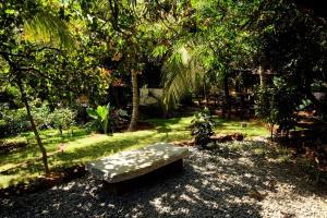 A garden outside Namaste Yoga Farm