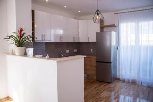 A kitchen or kitchenette at Luxurious Penthouse Apartment