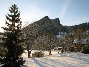 Chalet LÃ -haut im Winter