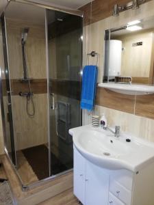 Un baño de Apartman Sandal