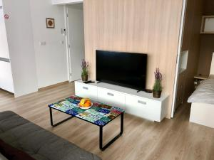A television and/or entertainment center at Cool Bratislava Apartment - A/C - Private Parking - Wifi