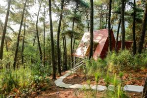 Cát Bà Eco Lodge