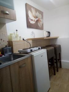 Кухня или мини-кухня в Vicky Apartments