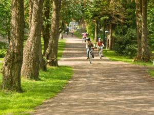 Radfahren an der Unterkunft Holiday Home Geesthof.4 oder in der Nähe