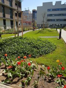 Сад в Apartmány Nové Butovice