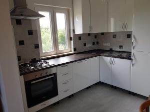 A kitchen or kitchenette at Dalmatia Sunshine