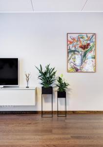 TV tai viihdekeskus majoituspaikassa Apartment Kiikri