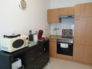A kitchen or kitchenette at Apartment-Leopoldstreet