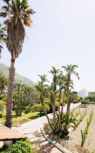 Сад в Residence San Domenico