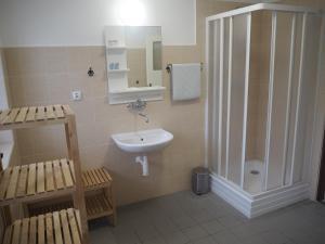 A bathroom at Economy Apartments České Švýcarsko