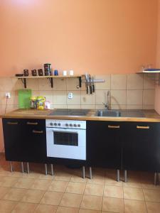 A kitchen or kitchenette at Shishkin apartments