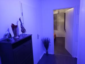 A kitchen or kitchenette at Bel appartement T2 près du lac avc un parking privé