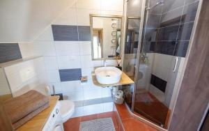 Vonios kambarys apgyvendinimo įstaigoje Vila Preiloja