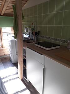 Virtuve vai virtuves aprīkojums naktsmītnē Ružēni Apartment