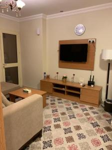 A television and/or entertainment center at Altelal Apartment