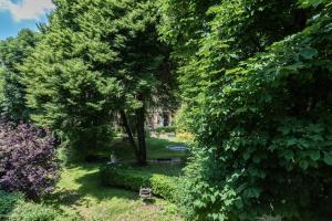 Giardino di Palazzo Del Carretto-Art Apartments