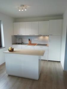 Kuhinja oz. manjša kuhinja v nastanitvi CARNIOLAN HOUSE - GORENSKA HIŠKA