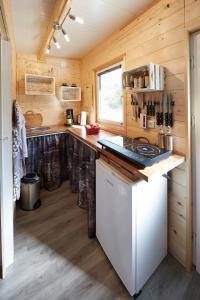 Kuchyňa alebo kuchynka v ubytovaní Flüzerhütte