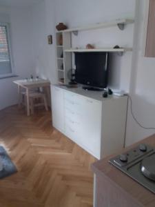 Televízia a/alebo spoločenská miestnosť v ubytovaní STUDIO APARTMAN OZALJSKA 96