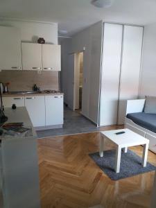 Kuchyňa alebo kuchynka v ubytovaní STUDIO APARTMAN OZALJSKA 96
