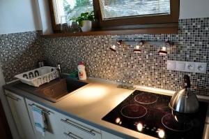 A kitchen or kitchenette at Bratislava Castle Hill Apartment