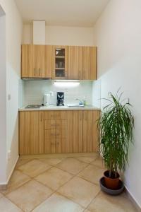 Küche/Küchenzeile in der Unterkunft Charles Bridge Apartments