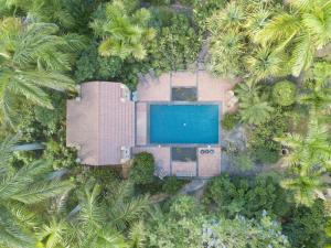 A bird's-eye view of El Jardin de la Palapa