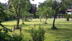 A garden outside Forest Edge Lodge and House