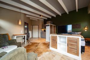TV a/nebo společenská místnost v ubytování Aparthotel Ostseeperle Glowe