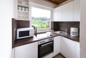 Virtuve vai virtuves aprīkojums naktsmītnē Ferienwohnungen Am Waldeck