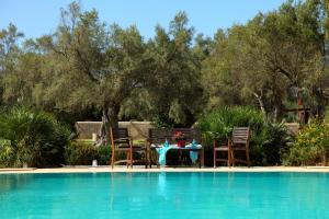 The swimming pool at or close to Olivastro Villa