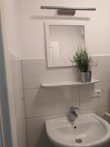 Ein Badezimmer in der Unterkunft Kaisershofer Rabennüst