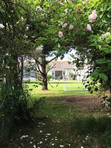 A garden outside Sunnymead