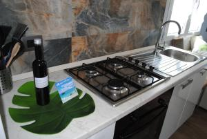 A kitchen or kitchenette at Holiday Residence Rifugio