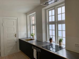 Кухня или кухненски бокс в Newly renovated and historical preserved apartment