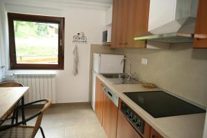 Kuhinja oz. manjša kuhinja v nastanitvi Apartma Opalika