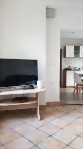 TV in/ali zabaviščno središče v nastanitvi Apartma Cerknica
