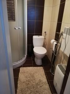 A bathroom at Apartma Natura Kope