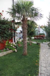 A garden outside Holiday Home Flora