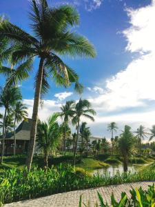Cocoland River Beach Resort & Spa