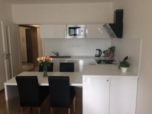 Kuchyň nebo kuchyňský kout v ubytování Apartmán Dara