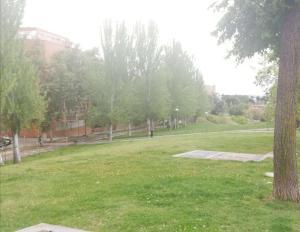 A garden outside Habitación en Zona de Lujo metro Buenos Aires - hab3