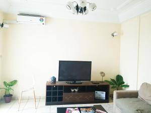 A television and/or entertainment center at Bel Appartement Meublé en plein centre-ville (Akwa)