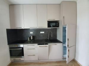Kuchyň nebo kuchyňský kout v ubytování Sport Apartment